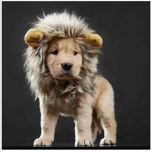 Other - ADORABLE lions mane for puppy, cat, small dog
